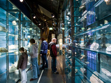 Inatura - glass showcases in the rock exhibition